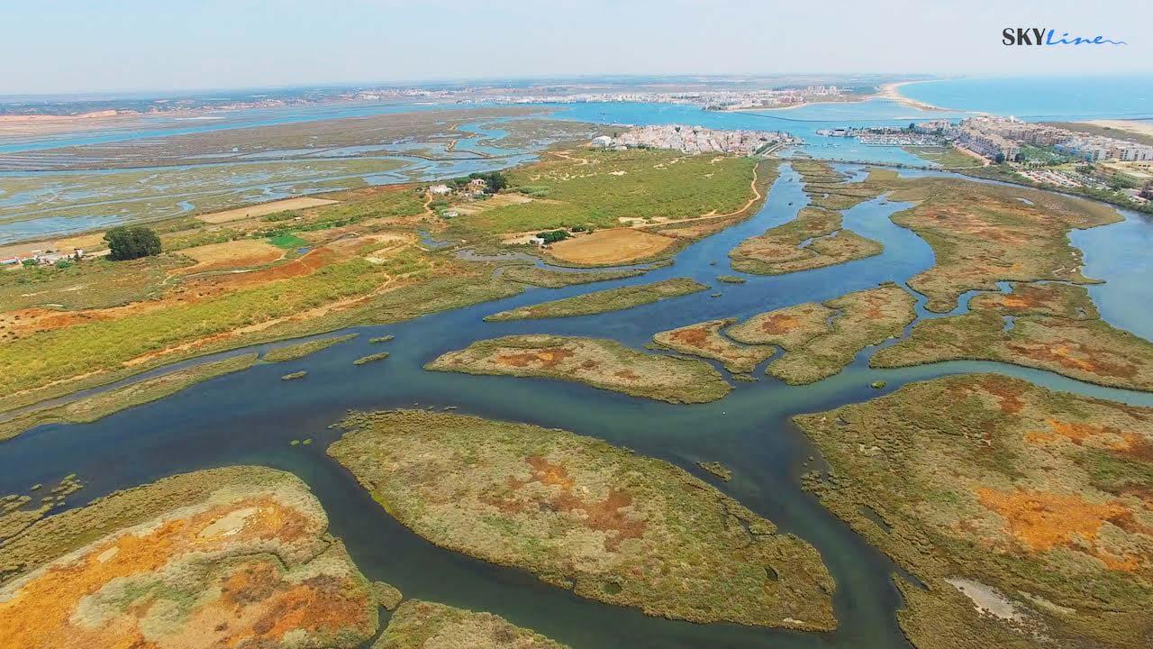 Marismas de Isla Cristina - Huelva