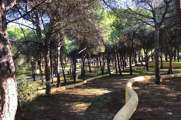 Camping Las Dunas de San Antón