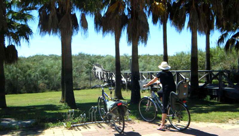 Foto de rutas por las marismas del Carreras - Isla Cristina - Ayamonte - Huelva
